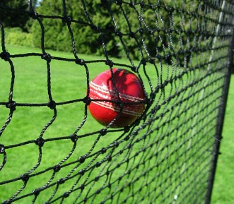 Cricket Barrier Nets; Outdoor #21 Medium-Impact and #42 High-Impact Netting; For Home, Cricket Fields, Recreational Parks, Schools.